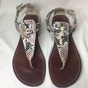 Steve Madden Python/Snake Print Sandals